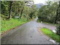 NN1257 : Tree-lined minor road at the entrance to Red Squirrel Campsite in Glen Coe by Peter Wood