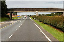 N7812 : Bridge over the M7 to the West of Junction 12 by David Dixon