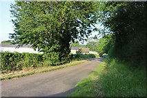 SP9594 : Red Lodge Road, Bulwick by David Howard