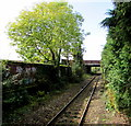 ST1580 : West along the Coryton Line from Whitchurch (Cardiff) station by Jaggery
