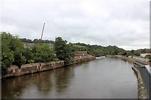 SS9512 : Tiverton: looking down the Exe from the town bridge by Martin Tester