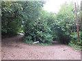 TQ3453 : Harestone Hill and Upper Harestone, near Caterham by Malc McDonald