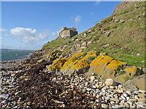 NU1341 : Castle from the Kilns by Adam Ward