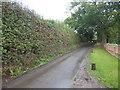 TL7834 : Devils Road alongside Alderford Farm by Marathon