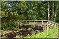 NU0701 : Footbridge by Ian Capper