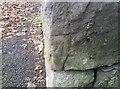 SD2273 : Ordnance Survey Cut Mark by Adrian Dust
