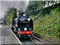 SD8010 : A Southern Visitor to East Lancashire by David Dixon