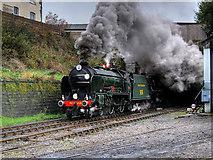 SD8010 : Schools Class Locomotive at Castlecroft by David Dixon
