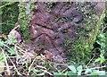 SD1785 : Ordnance Survey Cut Mark by Adrian Dust