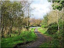 NS3586 : Path approaching A82 by Trevor Littlewood