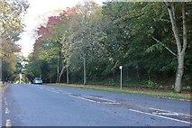 TQ7169 : Watling Street, Strood by David Howard