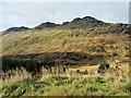 NN2309 : Lower slopes of Binnein an Fhìdhleir / Stob Coire Creagach by Trevor Littlewood