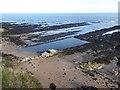 NO5116 : Rocky shore below St Andrews Castle by Oliver Dixon