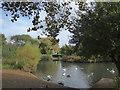 TQ2176 : Barnes Pond by Marathon