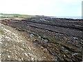 NO5804 : Rocky shoreline at Kilrenny by Oliver Dixon