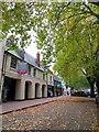 SP4540 : Autumn trees in Bridge Street by Steve Daniels