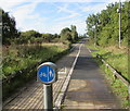 SO5058 : Combined footpath and cycleway on the west side of the A49 Leominster Bypass by Jaggery