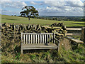 SE2408 : Bench, stile and a solitary tree by Stephen Craven