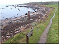 NO5101 : Fife Coastal Path west of Newark Castle by Oliver Dixon