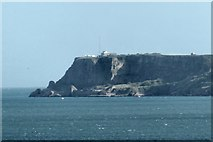 SX9456 : Berry Head by Peter Jeffery
