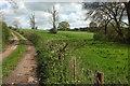 ST4909 : Grass field near Kingswood Farm by Derek Harper