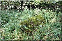 NT5570 : Old Gravestones in Baro Kirkyard (6) by Anne Burgess
