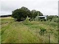 NT5031 : Borders  Abbeys  Way  at  Faldonsidemoor by Martin Dawes