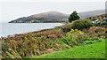 NN0700 : Shore of Loch Fyne near to Creag nam Faoileann by Trevor Littlewood