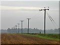 SK7598 : Power lines in a field boundary by Graham Hogg