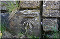 NX9821 : Benchmark on wall on east side of road at East Croft Terrace by Luke Shaw