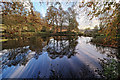 SK3160 : Mill Pond in Lumsdale by Andy Stephenson