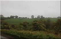 SU3187 : View across fields, Kingston Lisle by David Howard