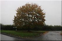 SU2383 : Road junction on Hinton Springs, Hinton Parva by David Howard