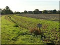 SE6925 : Warning sign beside a field drain  by Graham Hogg
