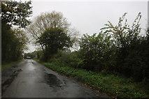 SU3591 : Goosey Lane by David Howard