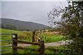 SD3786 : Staveley-In-Cartmel : Grassy Field by Lewis Clarke