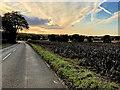 SD5100 : Rainford Road west of Billinge by David Dixon