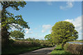 ST5409 : Road past Bingham Bower Farm by Derek Harper