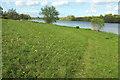ST5410 : Meadow by Sutton Bingham Reservoir by Derek Harper
