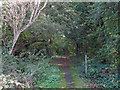 TQ0792 : Footpath east of Rickmansworth Road by Mike Quinn