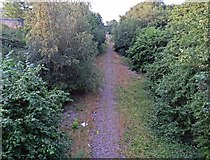 SK4374 : Former railway northwards by Andrew Tatlow