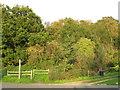 TQ3965 : Path onto West Wickham Common, near Hayes by Malc McDonald