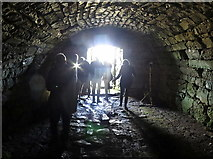NY9398 : High Shaw Bastle - vaulted basement by Andrew Curtis