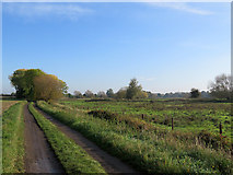 TL4352 : Bridle track and water meadows by John Sutton