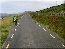 V3198 : R559 Slea Head Drive near Dunmore Head by David Dixon