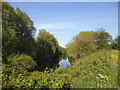 SE3231 : River Aire downstream of Knowsthorpe by Stephen Craven