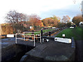 SJ7659 : Trent and Mersey Canal lock 61 by Stephen Craven