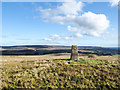 NY9540 : Trig point on Crow Coal Hill - 3 by Trevor Littlewood