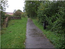 ST2896 : National Cycle Route 49 beside the Monmouthshire and Brecon Canal by JThomas