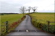 H5268 : Lane, Eskermore by Kenneth  Allen